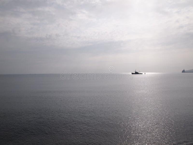 Fiska ship arkivfoto