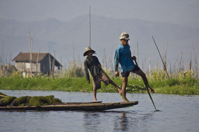 Fiskare/Equilibrist på Inle sjön royaltyfri bild