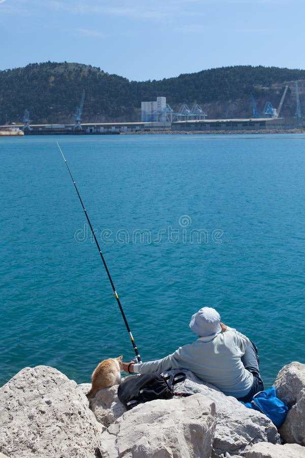 Fiskare i företaget av en katt royaltyfria foton