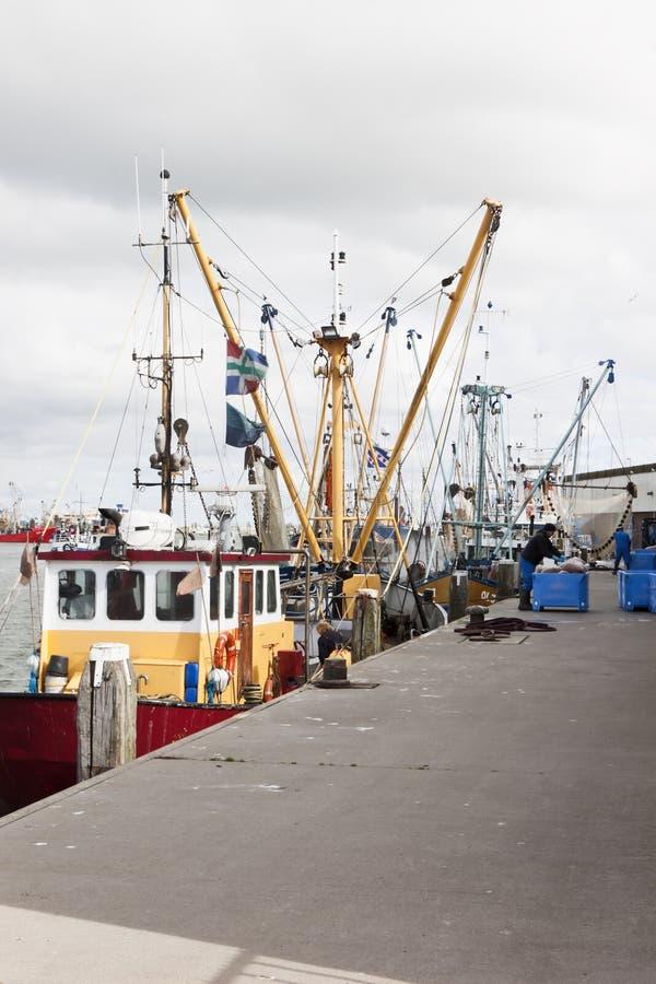 Fiskare i hamnen av Lauwersoog, Nederländerna arkivbild