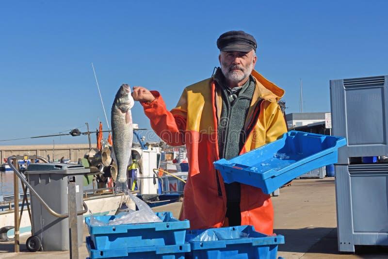 Fiskare med en fiskask inom en fiskebåt arkivbild