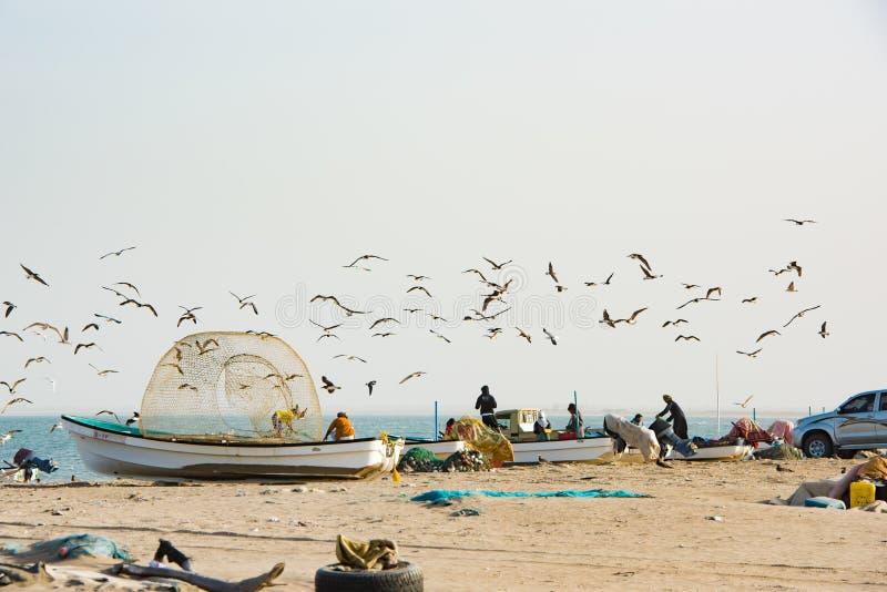 Fiskare som hem kommer från havet med små fartyg, Sohar, Oman arkivbilder