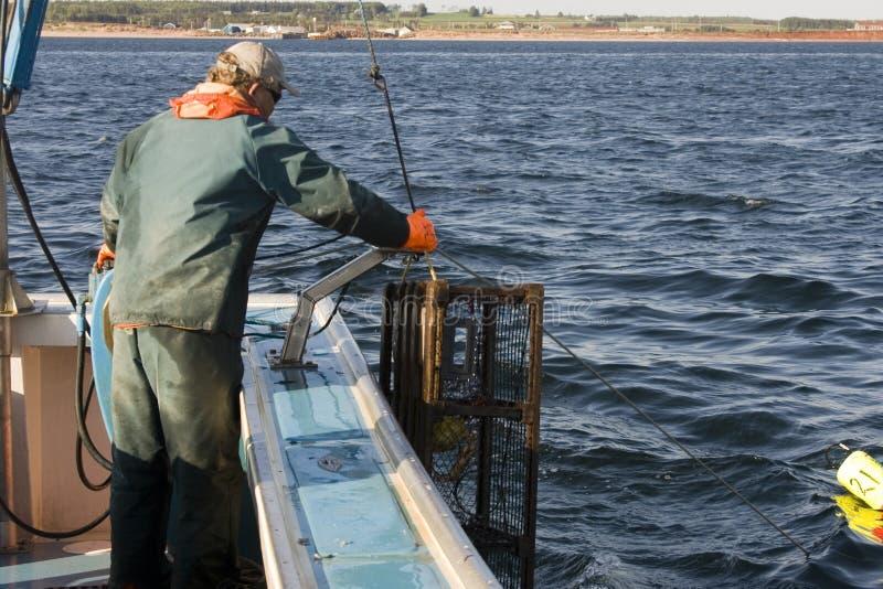 fiskarearbete royaltyfri foto