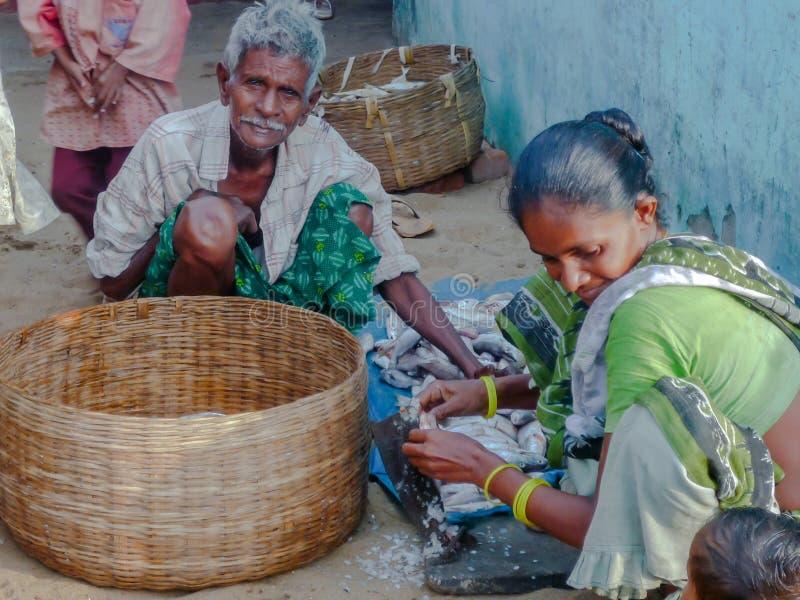 Fiskarefamiljen att göra ren fisken på jordningen royaltyfria bilder