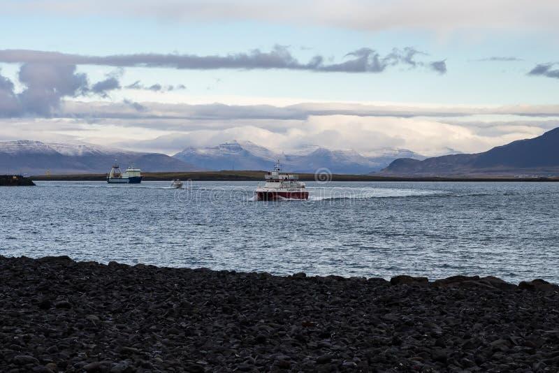 Fiskarehamn med fartyg i fjärd på med is havsvatten i Reykjavik, Island royaltyfria bilder