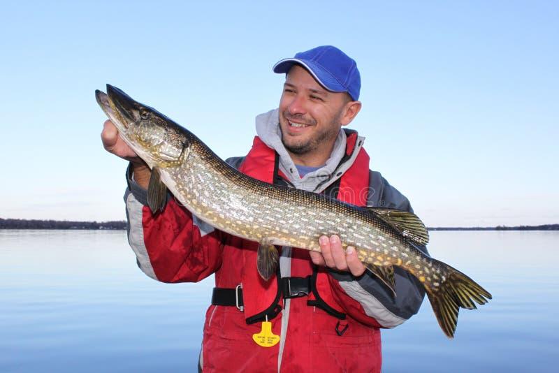 Fiskaren poserar med den nordliga Pike fisken arkivbilder