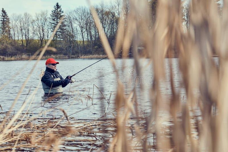 Fiskaresnurrandefiske genom att använda bröstkorgvadare royaltyfri bild