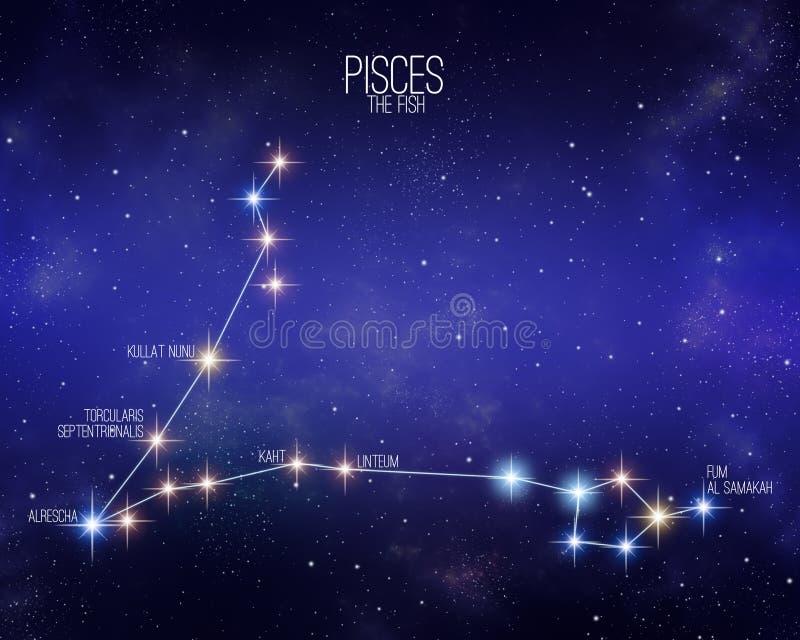 Fiskarna översikten för fiskzodiakkonstellation på en stjärnklar utrymmebakgrund med namnen av dess huvudsakliga stjärnor Relativ royaltyfri illustrationer