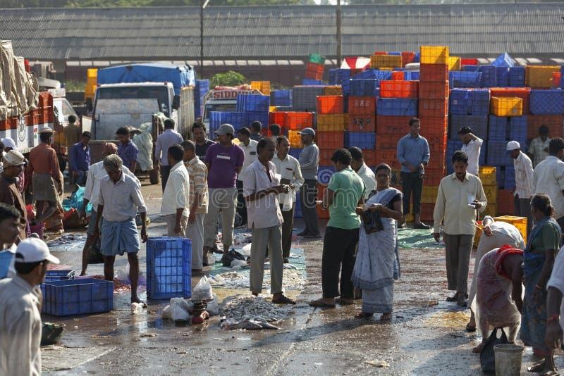 Fiskarna som överför det nya låset från fartyg för vägtransport, Mangalore, Karnataka, Indien royaltyfria foton