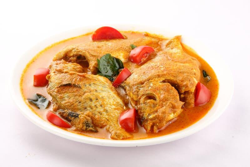 Fiskcurry från asiatisk kokkonst arkivfoton