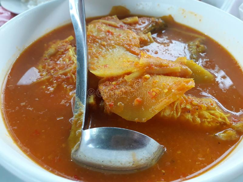 Fiskcurry med sur och kryddig anstrykning för bambuskott, är sydlig mat, landet Thailand arkivfoton