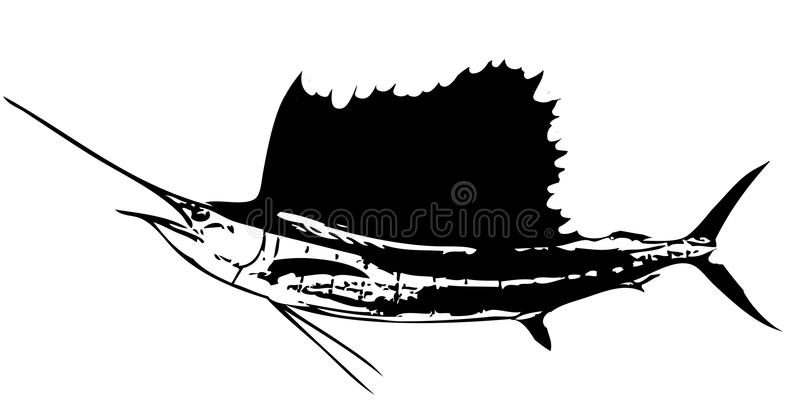 Fiskdropp för atlantisk sailfish vektor vektor illustrationer