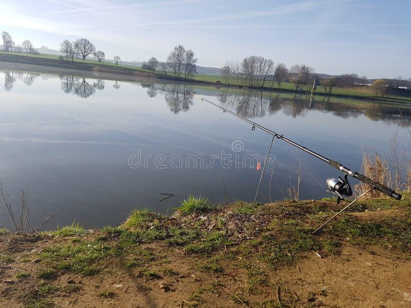 fiske royaltyfri foto