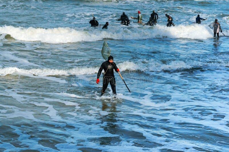 Fiske för bärnsten, folk fångar bärnstensfärgade vågor arkivbilder