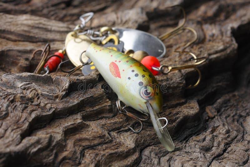 fiske lockar royaltyfri fotografi