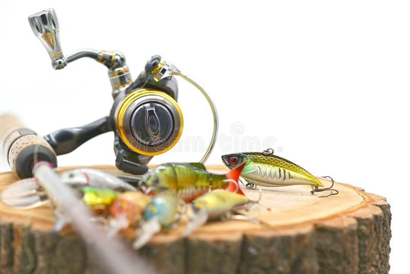 fiske lockar royaltyfri bild