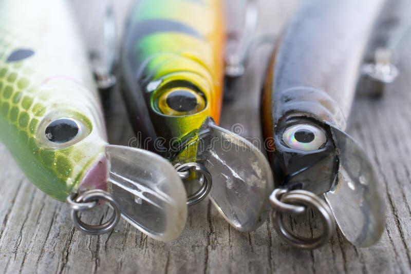 Fiske lockar tätt upp royaltyfria bilder