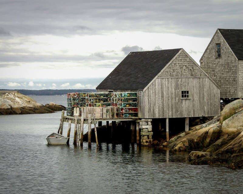 Fiske sammanbor med målad effekt fotografering för bildbyråer