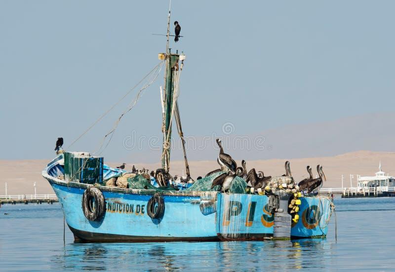 Fiskebåt i den Paracas nationalparken peru fotografering för bildbyråer