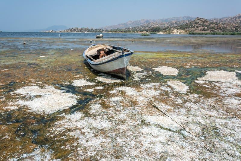 Fiskebåt längs kusten av sjön Bafa i Turkiet royaltyfri fotografi