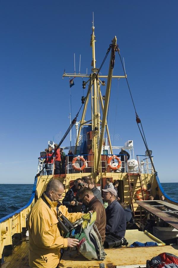 Fiskebåt på det Wadden havet royaltyfria foton