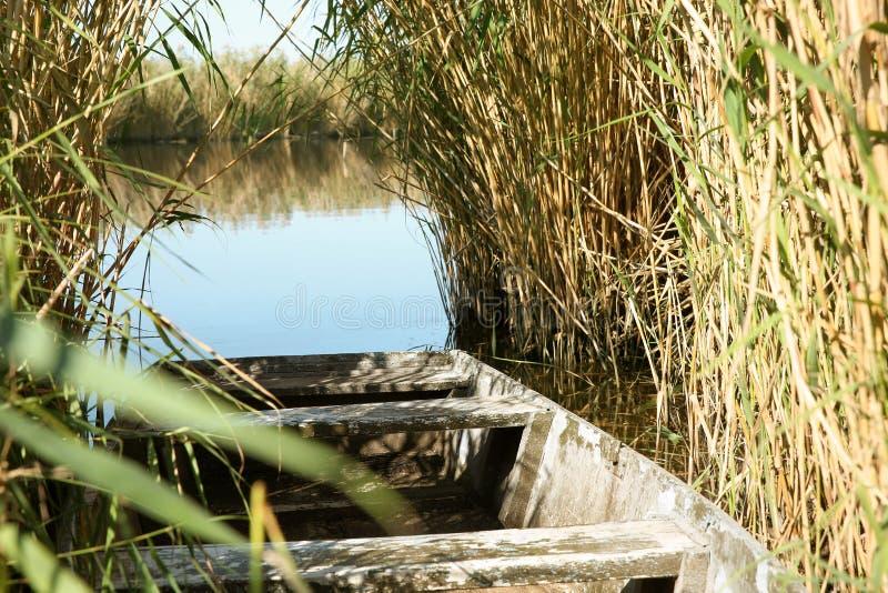 Fiskebåt på flodstranden arkivfoton