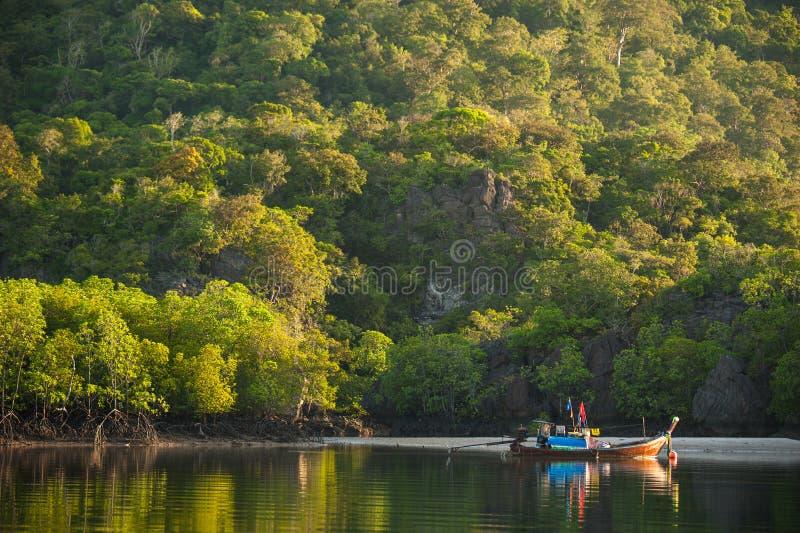 Fiskebåtar i havet och mangroveskog av Thailand arkivbild
