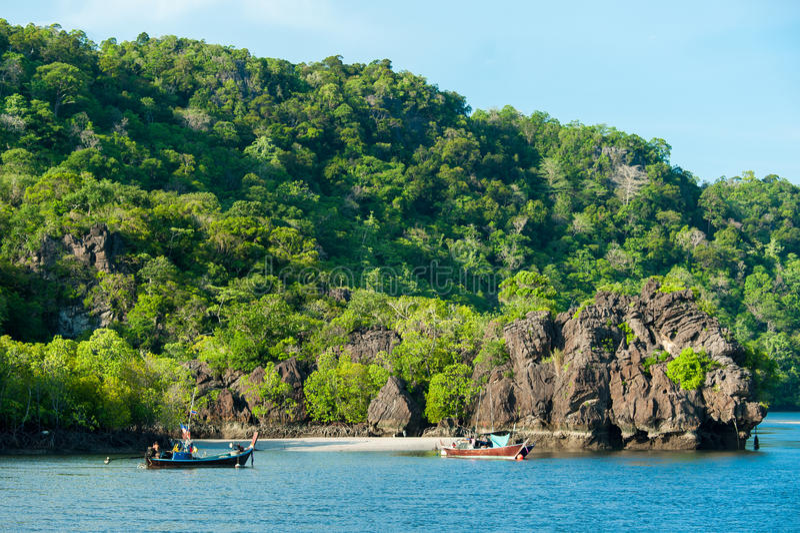 Fiskebåtar i havet och mangroveskog av Thailand arkivbilder