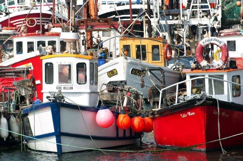 Fiskebåtar i Howth härbärgerar, Howth (Dublin), Irland royaltyfri fotografi