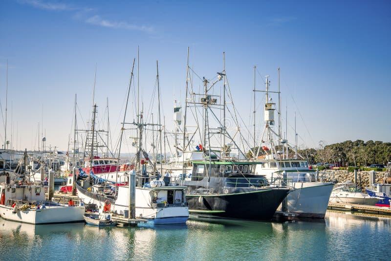 Fiskebåtar San Diego, Kalifornien arkivbild