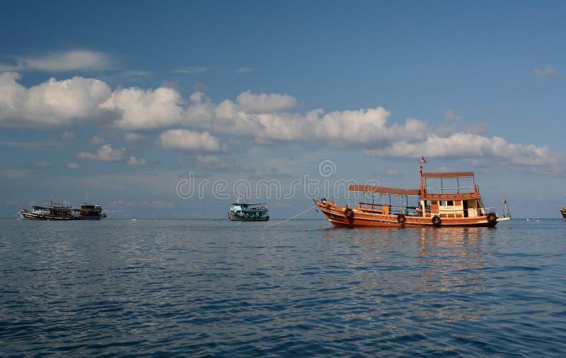 Fiskebåtar som förtöjas i den Mae Haad fjärden koh tao thailand arkivbild