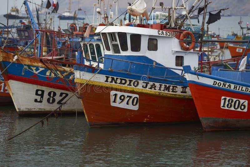 Fiskehamn av Iquique, Chile arkivbilder