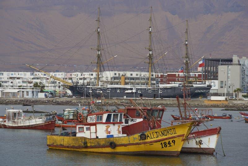 Fiskehamn av Iquique, Chile royaltyfri fotografi