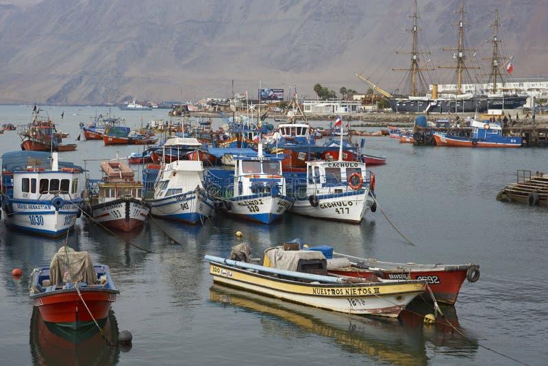 Fiskehamn av Iquique, Chile arkivbild