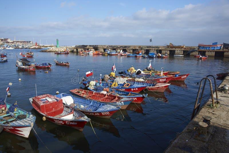 Fiskehamn i Antofagasta, Chile royaltyfria foton