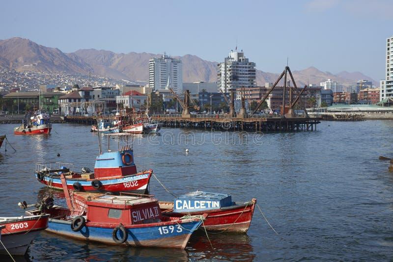 Fiskehamn i Antofagasta, Chile arkivbild