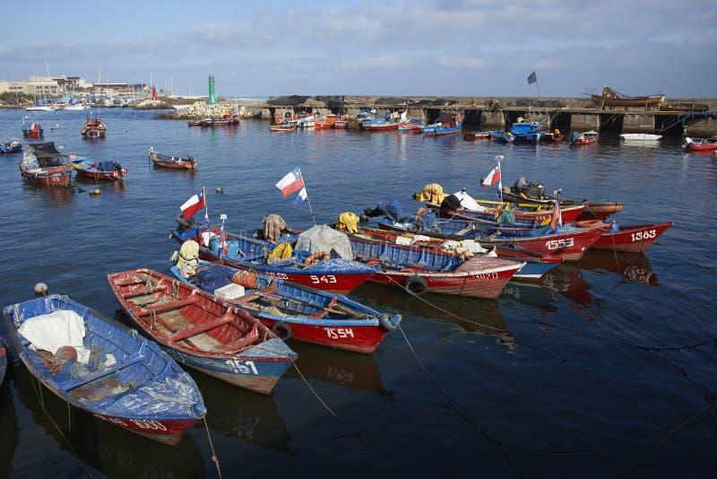 Fiskehamn i Antofagasta, Chile fotografering för bildbyråer