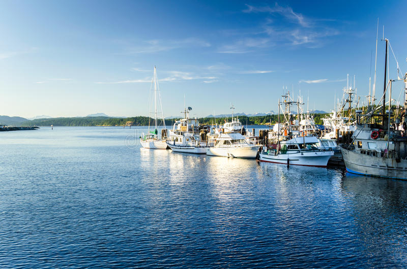 Fiskehamn på solnedgången arkivbild