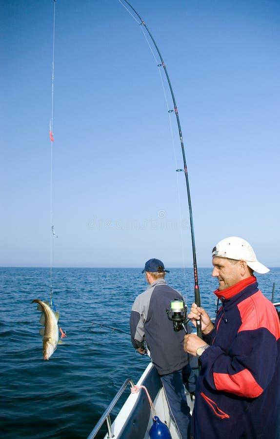 fiskehav royaltyfria foton