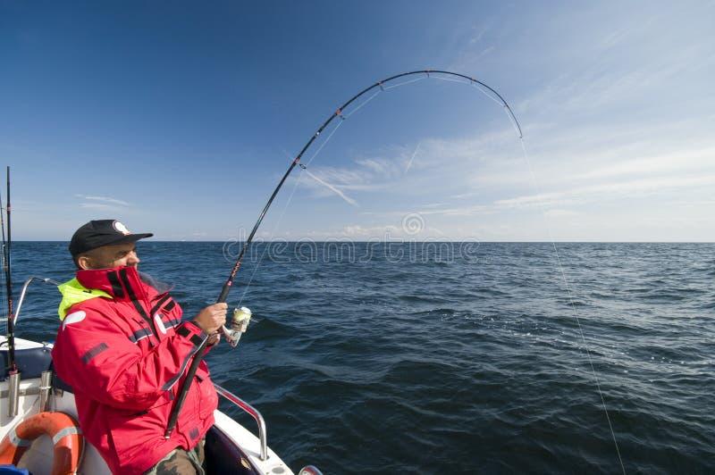 fiskehav royaltyfria bilder