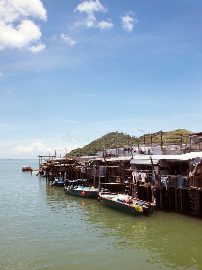 fiskehong traditionell by royaltyfri bild
