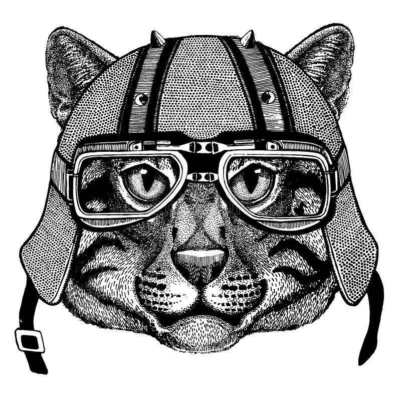 Fiskekatt som bär en motorcykel, aero hjälm Utdragen bild för hand för tatueringen, t-skjorta, emblem, emblem, logo, lapp vektor illustrationer