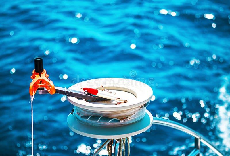 Fiskelål eller spånskikt, rulle royaltyfria foton