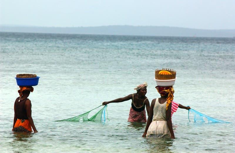 fiskemosambiquekvinnor fotografering för bildbyråer
