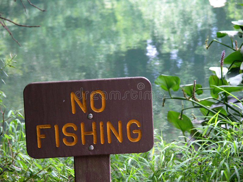fiskenr. royaltyfria foton