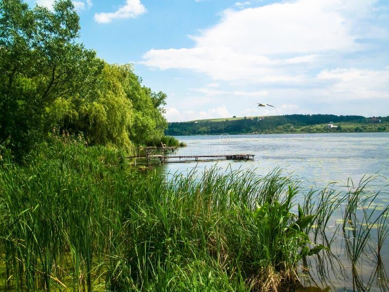 fiskesjö för tyst ställe arkivbild
