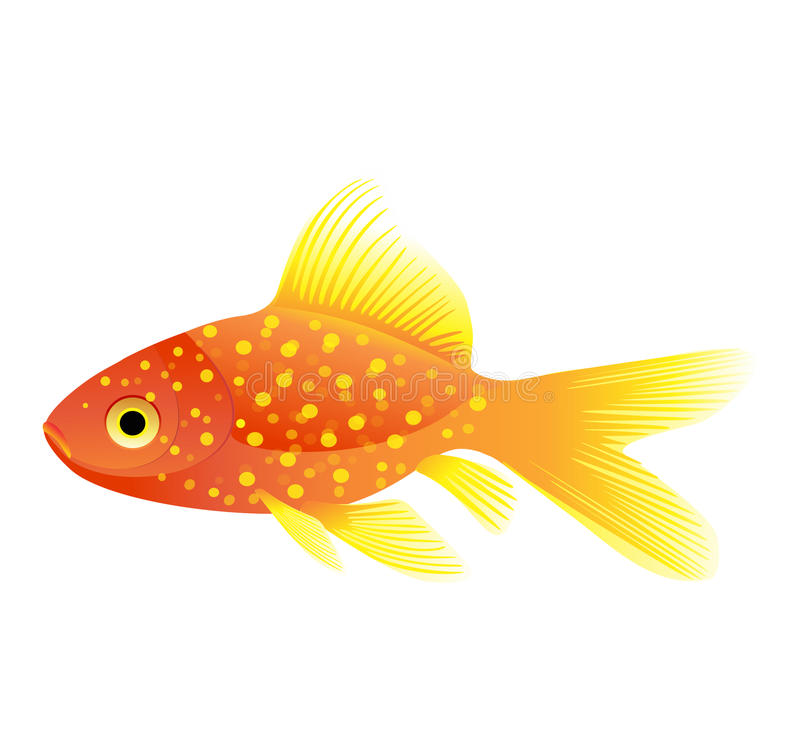 fiskguldvektor vektor illustrationer