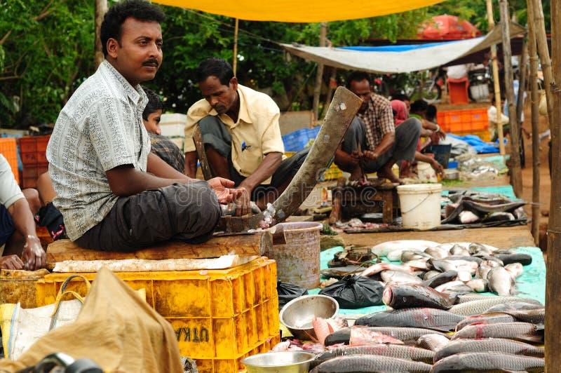 fiskindia marknad royaltyfri bild