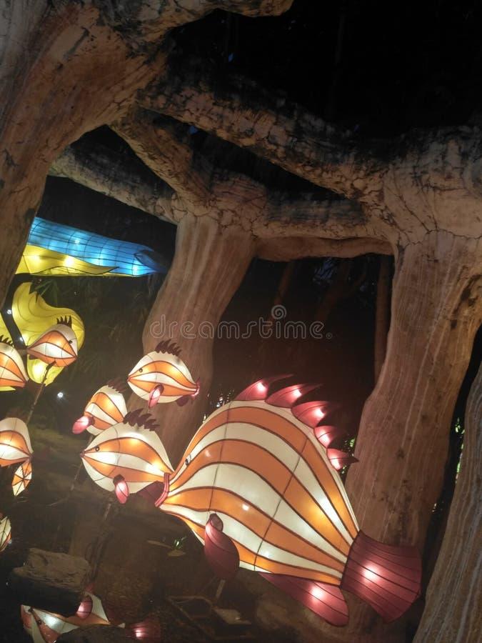 Fisklampa arkivfoton