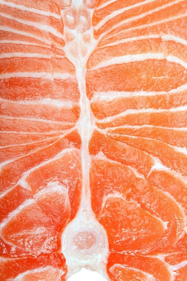 fisklax arkivfoto